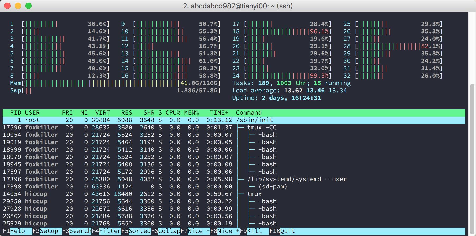 htop 32cores 128GB RAM
